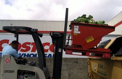 Image of Wharton Costco employee Claudio Alvarez dumps spoiled produce into an organics recycling bin.  The produce will be turned into compost.