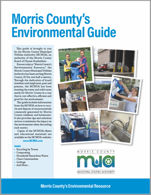 image of cover to 2018 Environmental Guide