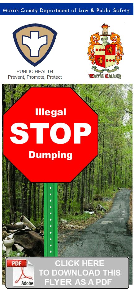 Download the Stop Illegal Dumping Flyer